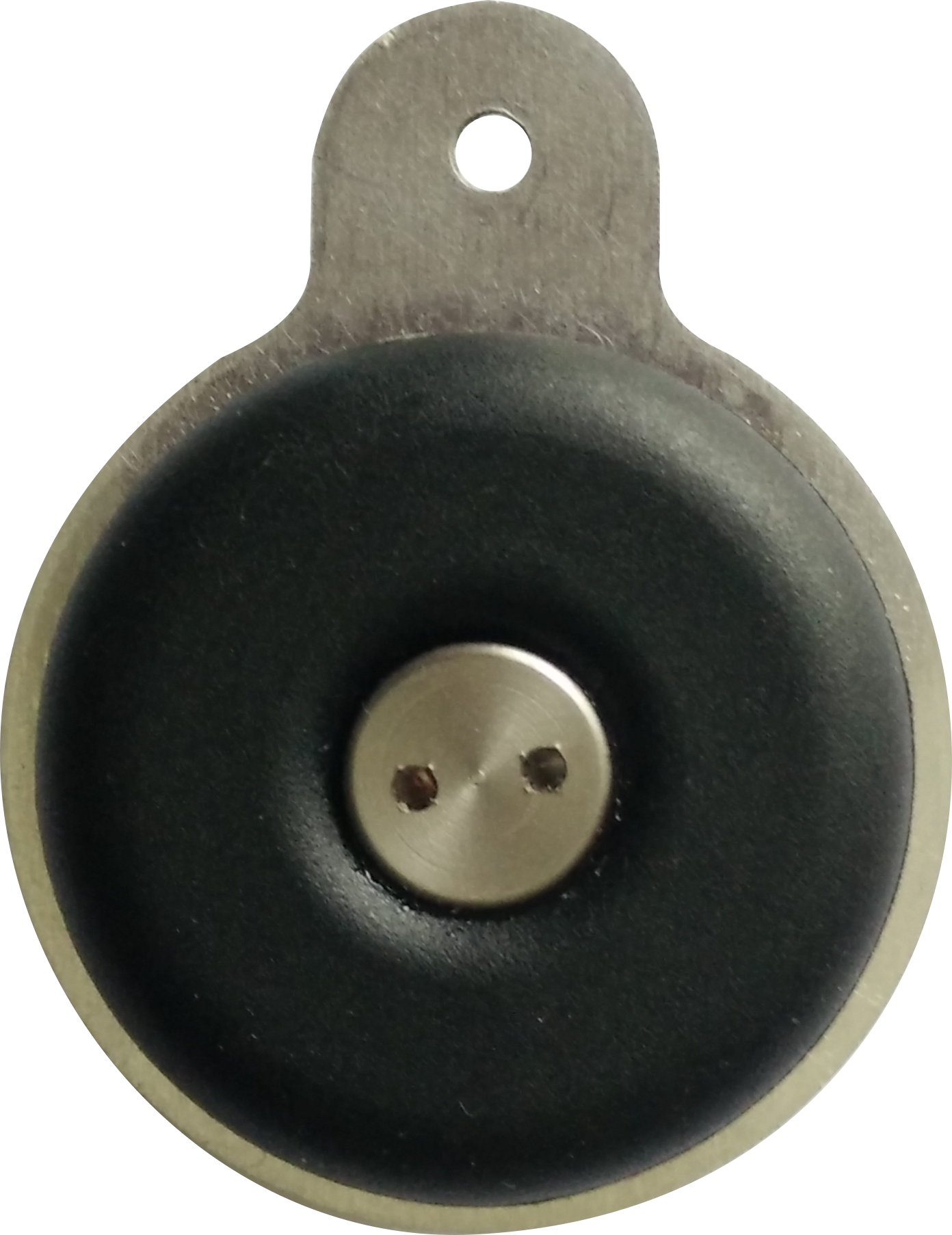 Dog Tag - Click link to view animation